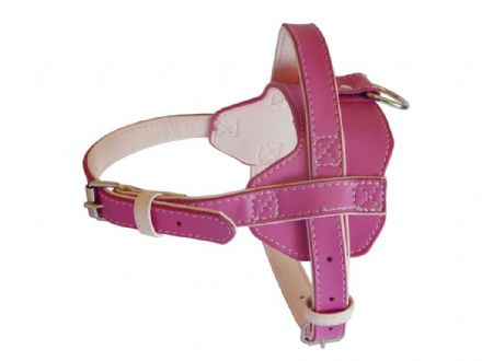 Fusion Pink Harness - Small